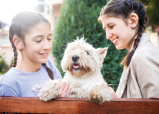 Should Every Home Have A Pet? - Think & Talk