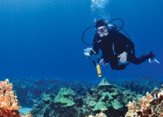 Professional Scuba Diver   - Career Exploration