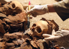 The Discovery Of An Ancient Tomb - World News