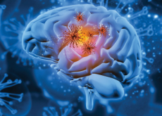 Removing Harmful Cells Reduces The Risk Of Alzheimer's Disease - Science