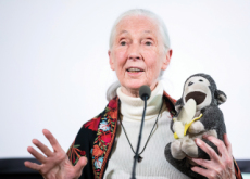 Jane Goodall - People