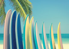 How to Choose a Surfboard - Life Tips