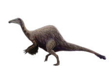 Deinocheirus in Korea - National News
