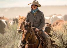 History of Cowboys - History