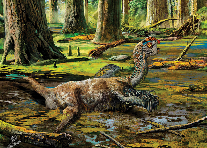 New Dinosaur Unearthed From the Mud2