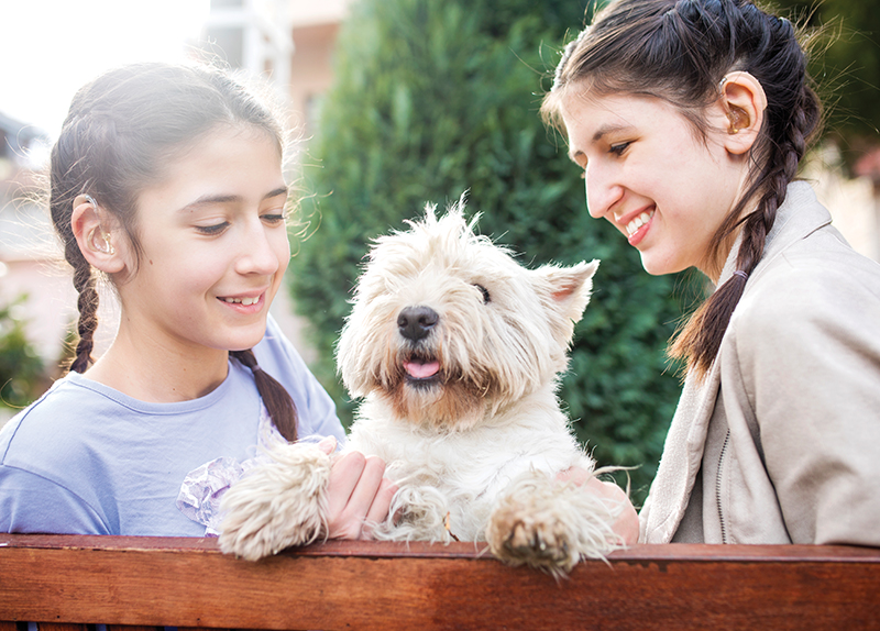 Should Every Home Have A Pet?0