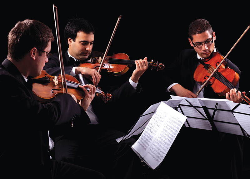 Violinist 0