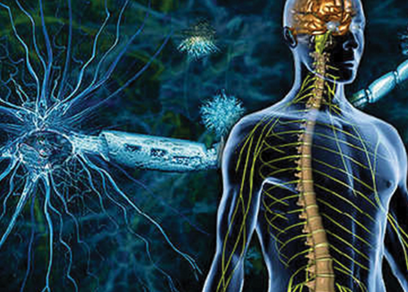 A Cure for Multiple Sclerosis?