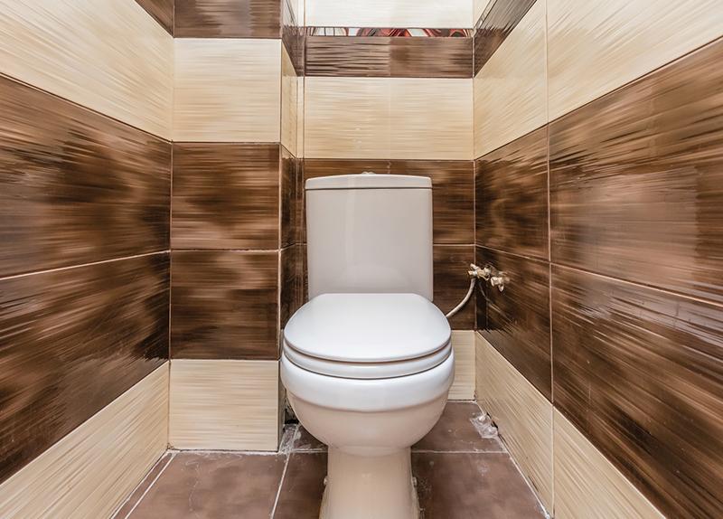 Private Toilets In India Go Public