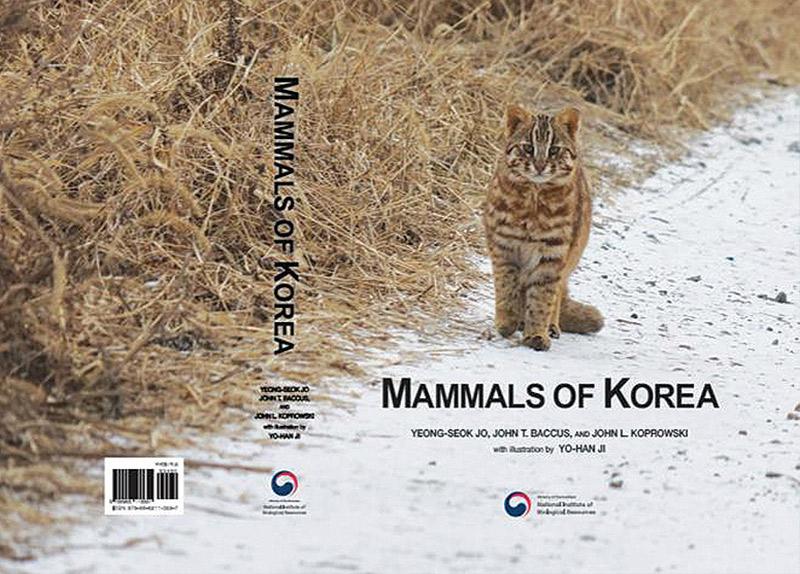 Mammals Of Korea0