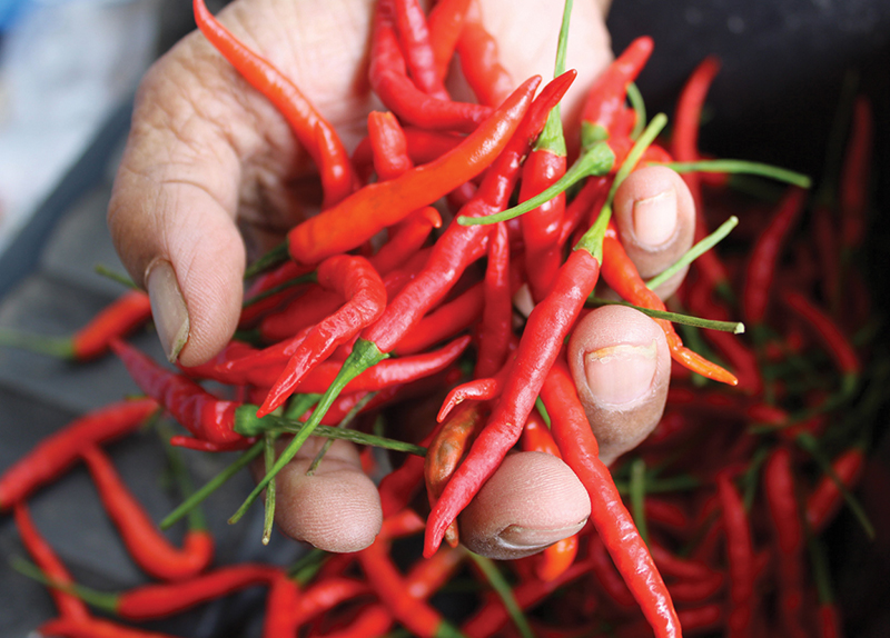Is Spicy Food Healthy?0