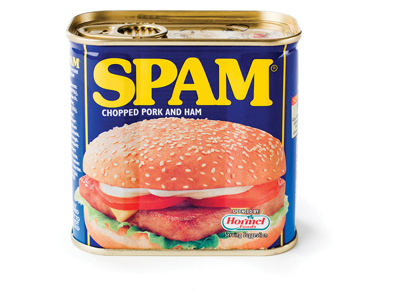 The History of Spam0