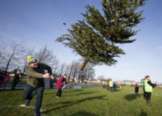 Christmas Tree Throwing Contest In Ireland - World News