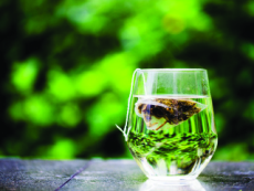 Tea-making Temple Tour - National News