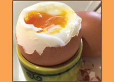 World Egg Jarping Championship - Culture