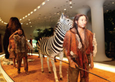 Yeoncheon Prehistoric Experience - Let's Go