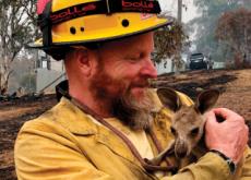 Australia's Unceasing Bushfires - World News