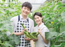 Danyang County Wins at the Korea Master Brand Awards Again - National News
