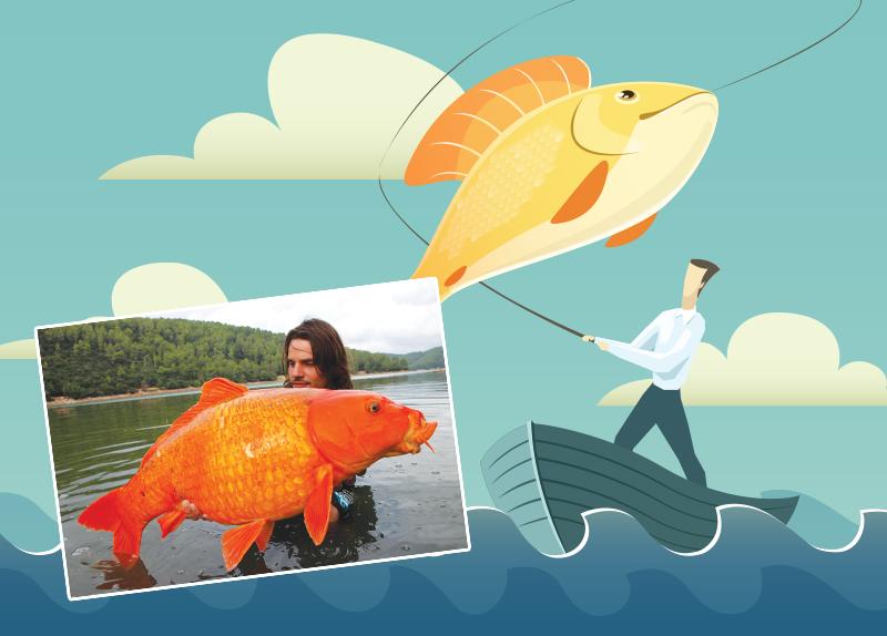 Giant Goldfish Foe