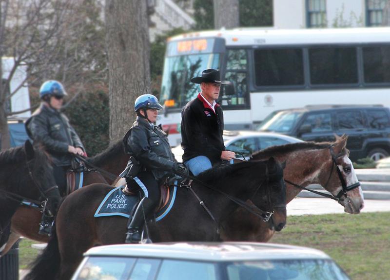 Cabinet Member Or Cowboy?0