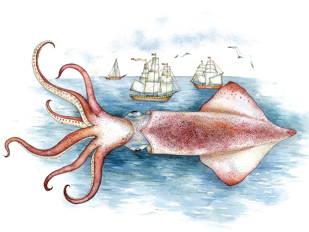 Three Brothers Find A Giant Squid0