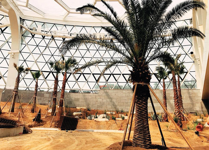 Seoul Botanic Park Opens On Oct. 110