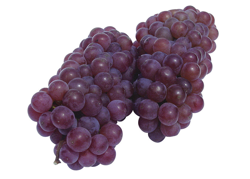 Grapes Without Seeds