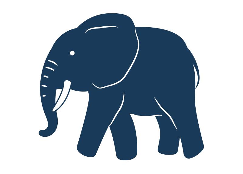 Zoo Elephants To Be Released Into Kenyan Wild4
