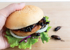 Insects: The Nutrient Rich Superfood of Tomorrow - Culture/Trend