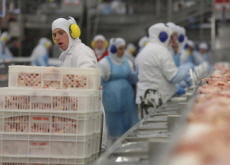 Hackers Attack World's Biggest Meat Producer - World News I