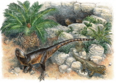 Researchers Discover the U.K.'s Oldest Meat-Eating Dinosaur - Science