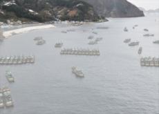 North Korea Has Gone Fishin' - National News I