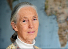 Another Honor For Dr. Goodall - People