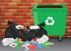 Plastic Eating Waxworms Could Revolutionize Recycling - Science