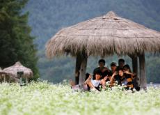 The Hyoseok Cultural Festival - In Spotlight