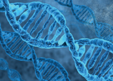 Scientists Successfully Edit Human Genes - Science