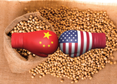 China And the U.S. Lock Horns Over Animal Feed - Special Report