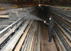 Preventive Measures Against Bird Flu - National News II