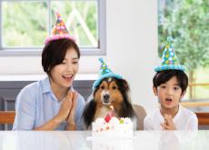 National Pet Day - Korea & World Past