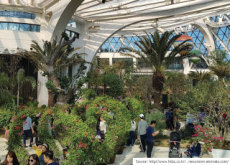 Botanical Park Opens in Seoul - Culture/Trend