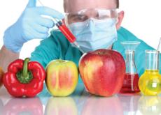 Should People Keep Growing GMOs? - Debate