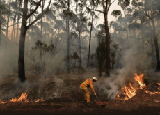 Australian Wildfires - Headline News