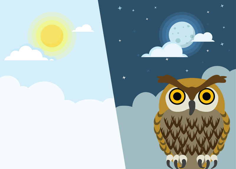 Early Risers Vs. Night Owls0