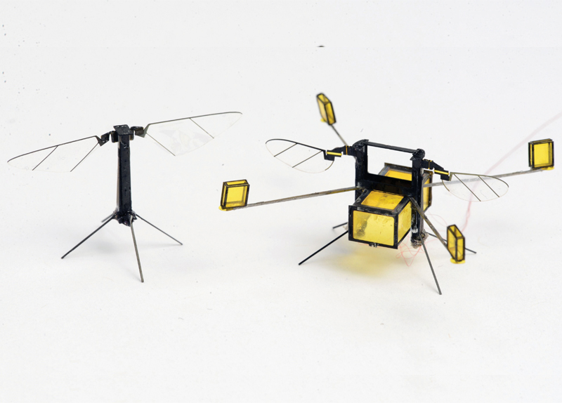 Robotic Bees Designed To Study The Ocean