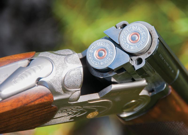 Should America Outlaw Gun Ownership?