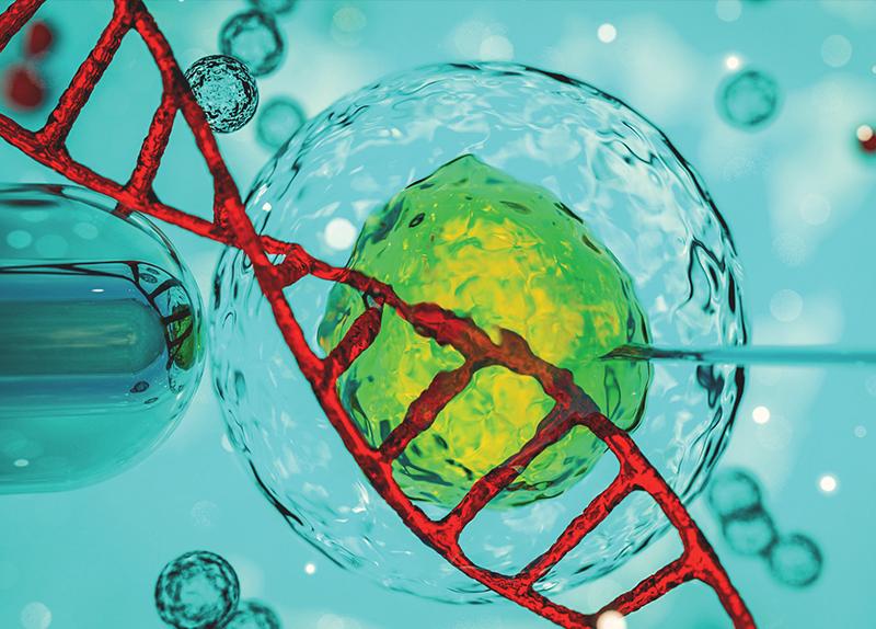 Registering Human Gene Editing