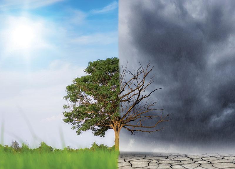 U.K. Declares Climate Emergency3