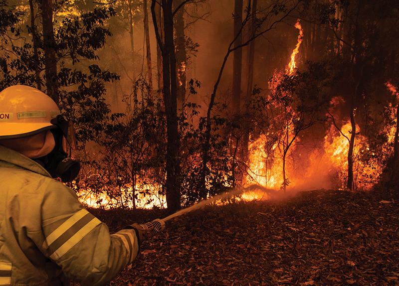 Australian Wildfires3