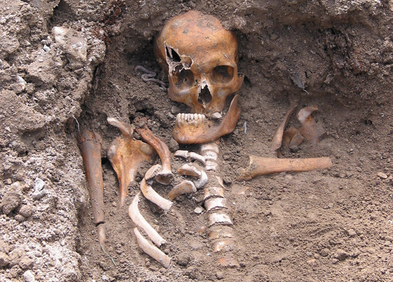 A 400-Year-Old Skeleton - World Features
